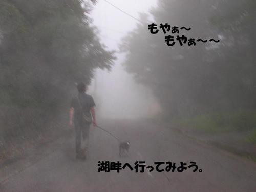 19,濃霧